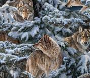 Wild Wings Narragansett Creek Wolves Fabric, Cotton, Multicolor