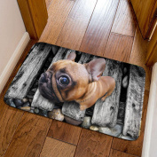 3D Non-slip Mats Cute Animals Simple Rectangular Kitchen Bedroom Bathroom Mat 40x60cm,B-40x60cm