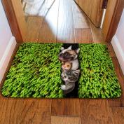 3D Animal Non-slip Mat Bathroom Mat Household Bedroom Kitchen Absorbent Pad Rectangular 40x60cm,A