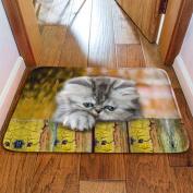 Stylish 3D Animal Prints Bathroom Mats Kitchen Non-slip Mats Rectangular 40x60cm,C