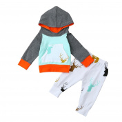 Kids Hoodies Sets Clothes, For 0-2 Years old,Princer Newborn Infant Boys Girls Toddler Deer Print Set Hooded Tops+Pants Outfits