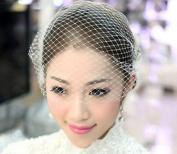 Fengh Women Wedding Bridal White Short Veil Hairwear