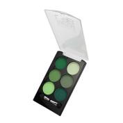 (6 Pack) KLEANCOLOR Beautician Lab Shimmer Shadow Pallete Chemist