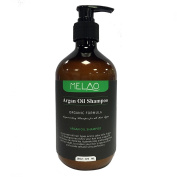 Argan Oil Hair Loss Shampoo with Restorative Formula for All Hair Types, Cleanses Hydrates and provides Shiny Hair