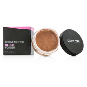 Cailyn - Deluxe Mineral Blush Powder #02 Burnt Orange - 9g10ml