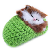 Eshylala 1 PCS Mini Cute Simulation Sleeping Cat Toys With Sound Kittens Cat Toys Doll Plush Toys Birthday Gifts Christmas Decoration,Green