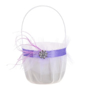 Remedios (6 Colours) Rhinestone and Colour Net Wedding Flower Basket, Purple