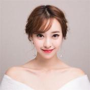 DELLT- Korean version of the diamond earrings super flash temperament crystal earrings female flow earrings long section of the Korean earrings