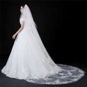 Wedding Bridal Veil Cathedral Length Embroidered Lace Edge Decorated With Beads With Comb White Ivory
