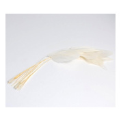 S & W Bridal B1482IV | Diamond Feathers | Pack of 12 | Ivory