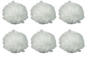 Luxury Luffa Loofah Bath Sponge On A Rope, Colour May Vary (Pack of 6) + Beyond BodiHeat Patch, 1 Ct