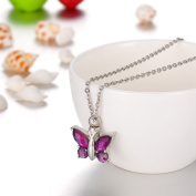 Purple Crystal Butterfly Cremation Jewellery Keepsake Memorial Urn Necklace