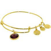 Alex And Ani Women's Crystal Birthstone Feb Amethyst Yellow Gold Cubic-Zirconia Charm Bracelet - 20cm