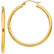 10k Polished 2.5mm Round Hoop Earrings