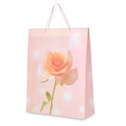 CLUB GREEN Gift Bag, Peach, 25 x 32 x 9 cm