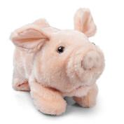 Tobar Playful Piggy