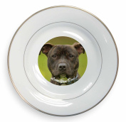 Staffie Dog 'Love You Dad' Gold Rim Plate in Gift Box Christmas Present