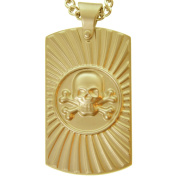 American Steel Jewellery Men's Stainless Steel Gold Tone Matte Skull Dog Tag with Chain