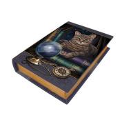 23cm Fortune Teller Book Rectangle Jewellery/Trinket Box Figurine