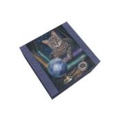13cm Fortune Teller Jewellery/Trinket Box with Mirror Figurine