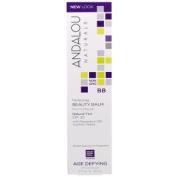 Andalou Naturals, BB Perfecting Beauty Balm, Natural Tint, SPF 30, Age Defying, 2 fl oz