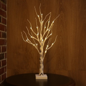 Zanflare 0.6M/60cm 24 LEDs Battery Operated Desk Tree Light, Warm White Bonsai Tree Light, Silver Birch Twig Tree for Home, Party, Birthday, Wedding Indoor Decoration
