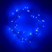 Indoor Fairy Lights with 40 Blue LEDs on Clear Cable by Lights4fun