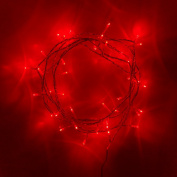 Indoor Fairy Lights with 40 Red LEDs on Clear Cable by Lights4fun