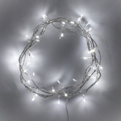 Indoor Fairy Lights with 40 White LEDs on Clear Cable by Lights4fun