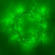 Indoor Fairy Lights with 40 Green LEDs on Clear Cable by Lights4fun