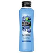 Alberto Balsam Blueberry Shampoo 350Ml