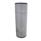 Crucial Unicel and Pleatco Pool Filter