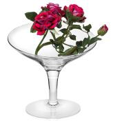 Transparent,Glass Snack & Dip Bowl 19cm | 20cm High Slant Rita
