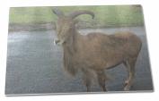 Cute Nanny Goat Extra Large Toughened Glass Cutting, Chopping Board
