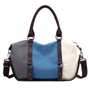 LINNUO Retro Canvas Shoulder Bag/Handle Bags/Cross Body Bag for Women Multi-Colour High Capacity