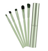 5 Piece Cosmetics Professional Cosmetic Makeup Brush Set Cosmetic Eye Brush Metal Handles in Metal Tin