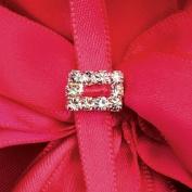 Mini Diamante Rectangle Buckle