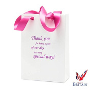 Special Day Wedding Bag 9 x 15cm x 7.6cm Pink\White