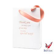 Special Day Wedding Bag 9 x 15cm x 7.6cm Rose Gold