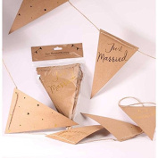 Kraft with Embossed Gold Just Married Bunting