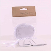 White & Silver Glitter Luggage Tags x 10