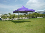 Canopy Tent 10 x 10 Commercial Fair Shelter Car Shelter Wedding Party Easy Pop Up