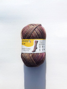 Regia Atelier Colour Colour 7956 4 Count Brand New Autumn/Winter 2017/18 Sock Yarn