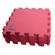 EVA Foam Puzzle Mat,Foam Mats,EVA Foam Interlocking Floor Mats,9 Titles Exercise Mat,30cm by 30cm