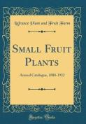 Small Fruit Plants
