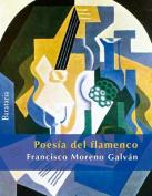 Poesia del Flamenco [Spanish]