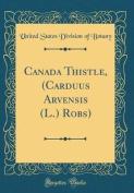 Canada Thistle, (Carduus Arvensis (L.) Robs)