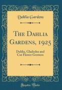 The Dahlia Gardens, 1925