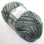 100 gr Sock Wool Opal Moments of Rebellion Remote Control 9087
