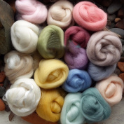 5g x 17 Colours Wool Yarn Fibre Roving for Needle Felting Hand Spinning